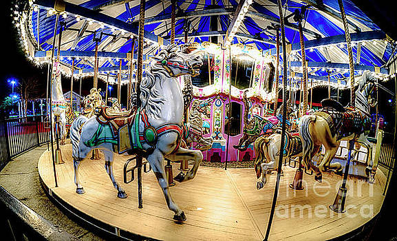 Christmas Carousel by David Smith