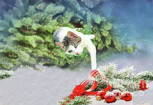 Christmas Cat by Janette Boyd