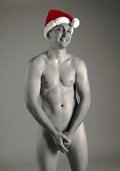 Christmas Cheer by Dan Nelson