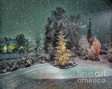 Christmas Eve by Edmund Nagele