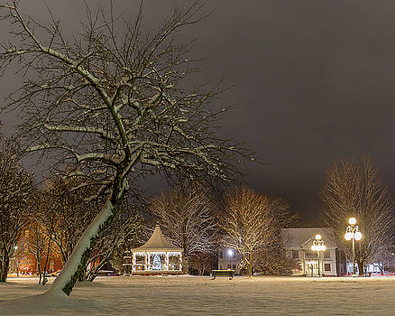 Christmas Evening in the Park by Tim Kirchoff