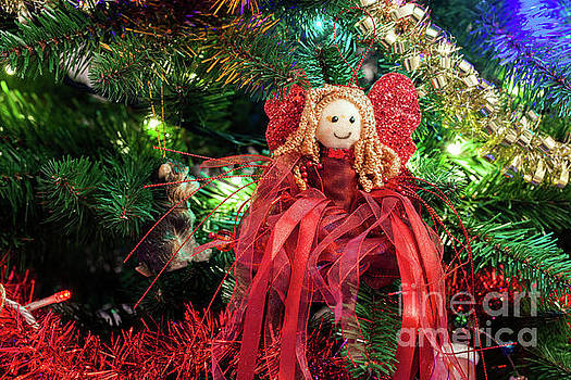 Christmas fairy hanging from a tree by Simon Bratt Photography LRPS