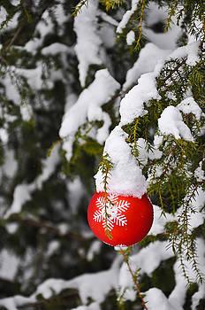 Christmas Greetings 1 by Stanislovas Kairys