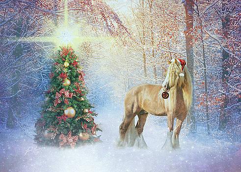 Christmas Gypsy Glow by Jamie Mammano