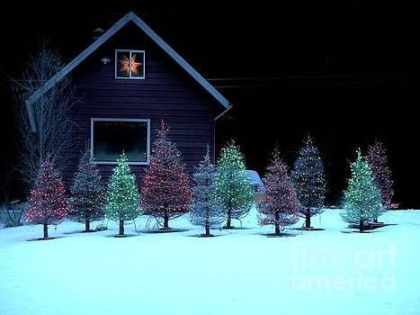 Christmas in Petersburg by Laura Wong-Rose