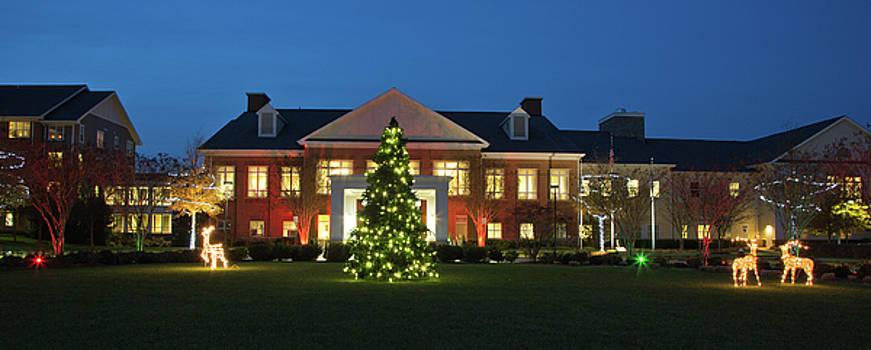 Christmas lights at Ashby Ponds by Jack Nevitt