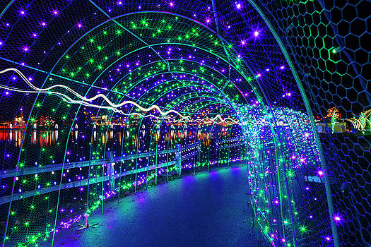 Christmas Lights in Tunnel at Lafarge Lake by David Gn