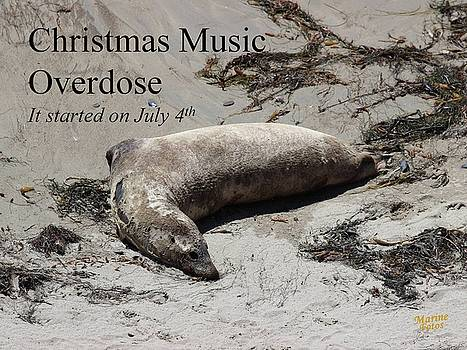 Christmas Music Overdose by Gary Canant
