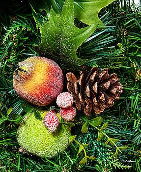 Christopher Holmes - Christmas Ornaments II