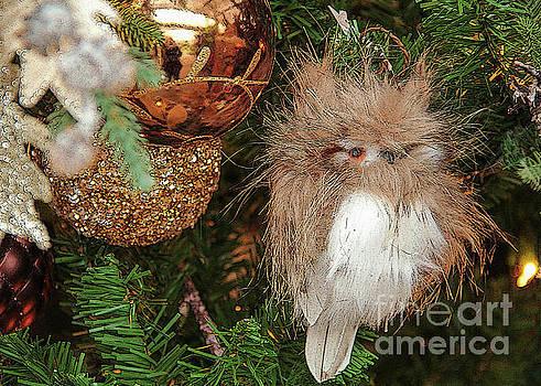 Christmas Owl by Linda Joyce