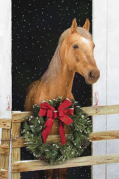 Christmas Ride by Norman Drake