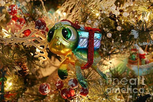 Christmas Sea Turtle by Lynn Jackson