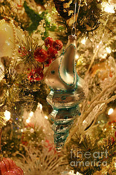 Christmas Seashell by Lynn Jackson