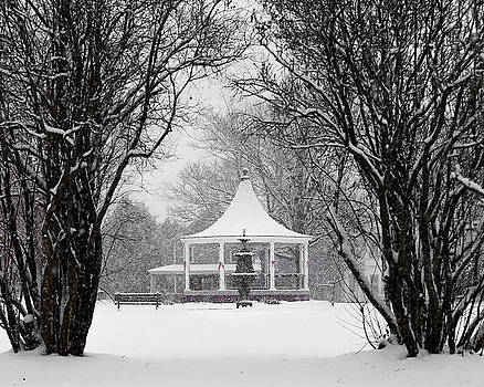 Christmas Season in the Park by Tim Kirchoff