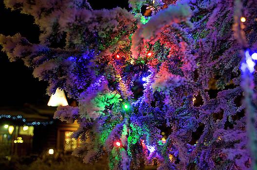 Christmas three by Tamara Sushko