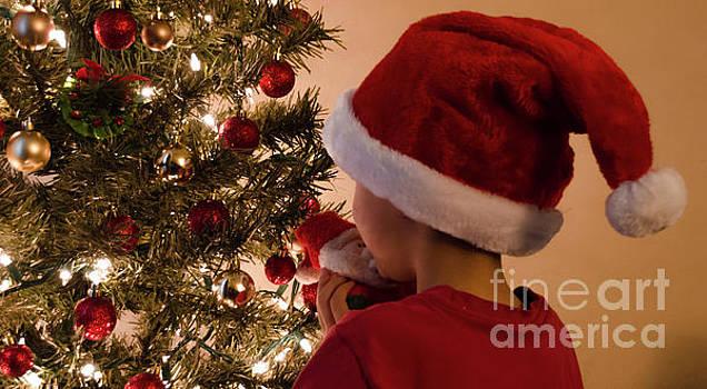 Andrea Anderegg - Christmas Time 2