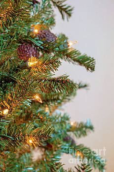 Andrea Anderegg - Christmas Time 3