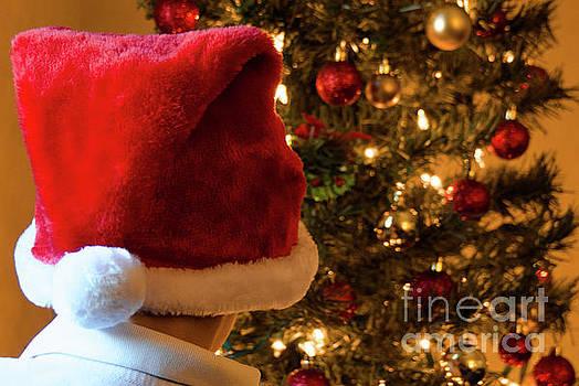 Andrea Anderegg - Christmas Time