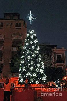 Gary Wonning - Christmas Tree