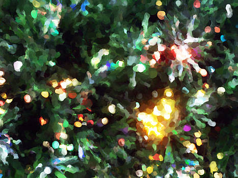 Michelle  BarlondSmith - Christmas Tree Lights Impression