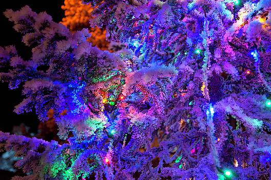 Christmas tree night decoration by Tamara Sushko