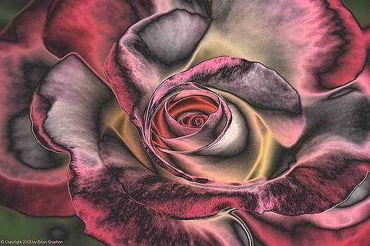 Brian Gryphon - Chrome Rose 368