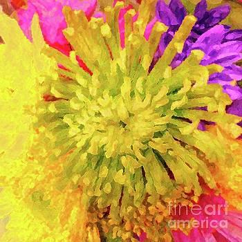 Chrysanthemum Fantasia by Barbie Corbett-Newmin