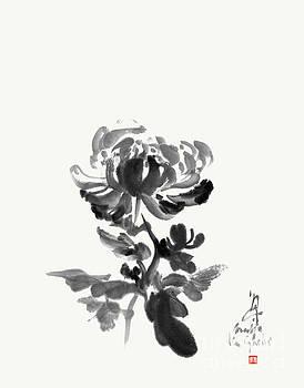 Chrysanthemum - Unpretentious Beauty by Nadja Van Ghelue