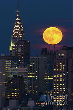 Regina Geoghan - Chrysler Building and the Sturgeon Full Moon