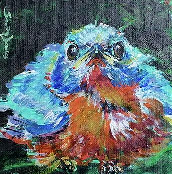 Chubby Blue Bird by Susan Davies