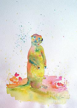 Chubs by Lynda Cookson
