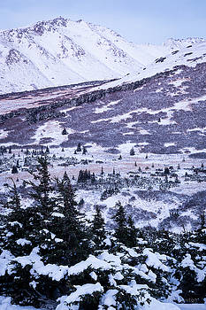 Chugach in Alpenglow by Tim Newton