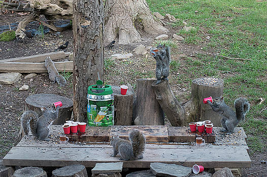 Chugging squirrels at beer pong by Dan Friend