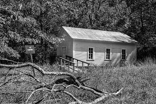 Church In The Woods by Tammy Chesney