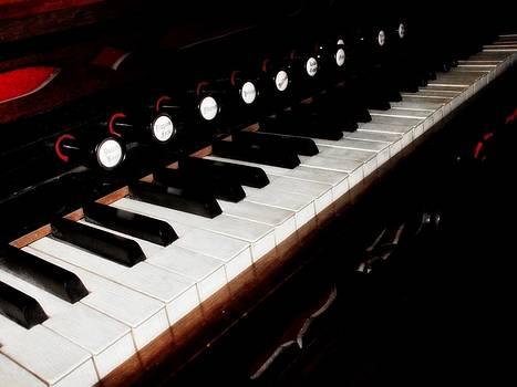Scott Hovind - Church Organ