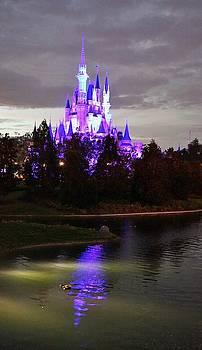 Cinderella Castle Reflection by Barkley Simpson