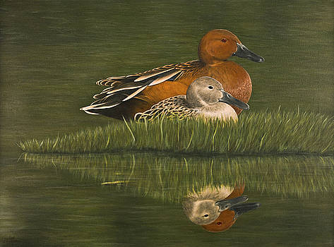 Cinnamon Teal Pair by Deborah Collier