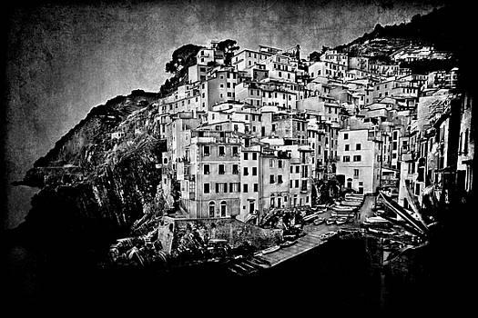 Cinque Terre by Terri Roncone
