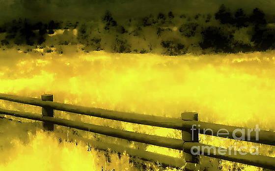 Tim Richards - Ciquique Pueblo Meadow 2
