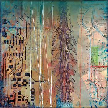 Circuitry by Brenda Erickson