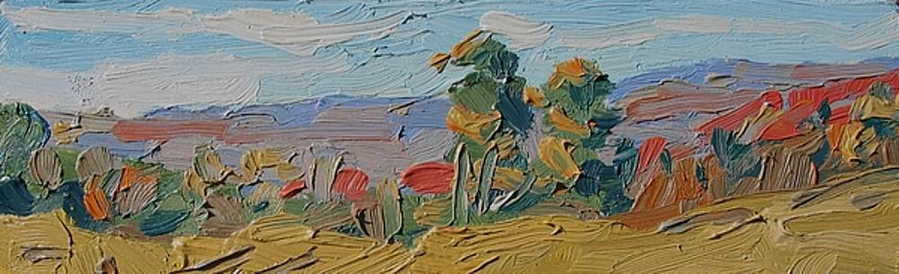 Cirrus Horizon by Phil Chadwick