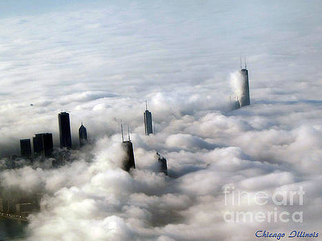 City Above The Clouds Chicago by Gardening Perfection