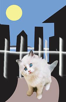 City Cat by Michael Chatman