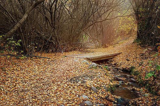 City Creek by Ramona Murdock