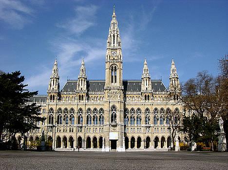 City hall - Rathaus in Vienna,Austria by Mirko Dabic