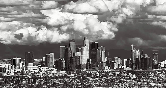 City of Angels by April Reppucci