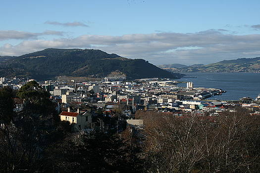 Terry Perham - City Of Dunedin From Unity Park