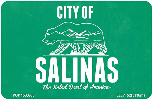 City of Salinas by Luis Padilla