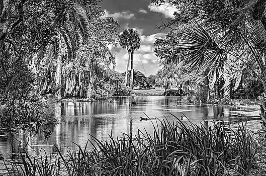 Steve Harrington - City Park Lagoon 3 bw