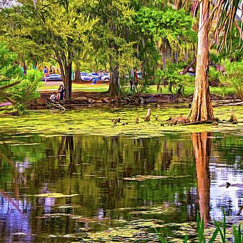 Steve Harrington - City Park Lagoon - Waterfowl Watching - Paint